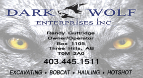 Dark Wolf Enterprises Inc