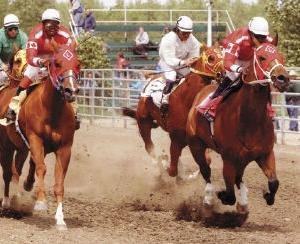 Local horse wins Millarville Paint Stakes