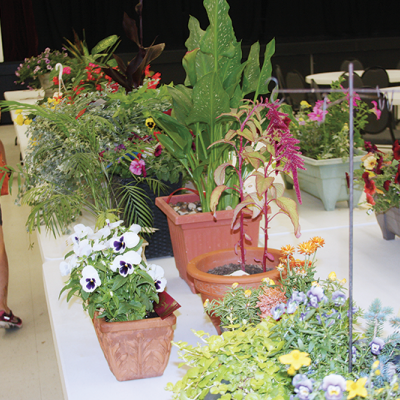 Trochu Elks and the Trochu Ag Society host 49th Annual Flower, Baking and Photo Show
