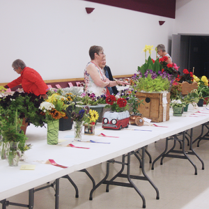 50th Trochu Flower, Baking and Photography Show results