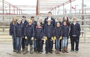 Kneehill Valley 4-H Beef Club host Innisfail and District 4-H Show and Sale
