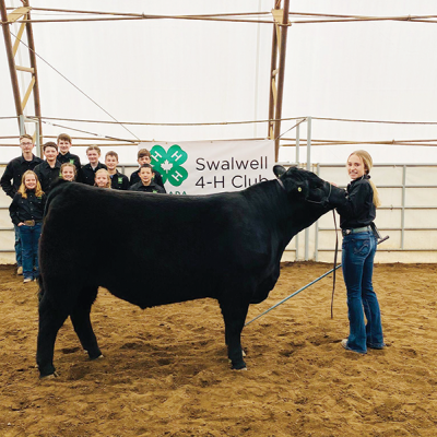 Swalwell 4-H Club gets show ready